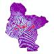 دانلود لایه جی ای اس و شیپ فایل های شهرستان فراهان