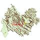 دانلود نقشه جی ای اس تقسیمات سیاسی استان کرمانشاه سال 1398