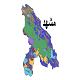 شیپ فایل کاربری اراضی شهرستان مشهد
