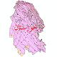 دانلود نقشه شیپ فایل اقلیمی استان خوزستان