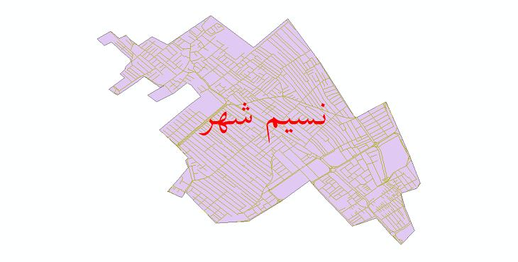 دانلود نقشه شیپ فایل شبکه معابر نسیم شهر سال 1399