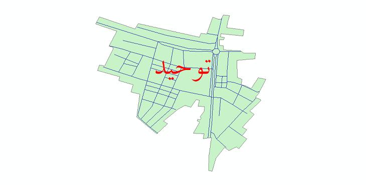 دانلود نقشه شیپ فایل شبکه معابر شهر توحید سال 1399